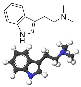 DMT-estructura-quimica